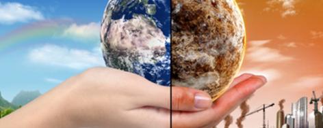 Ecology and Sustainability